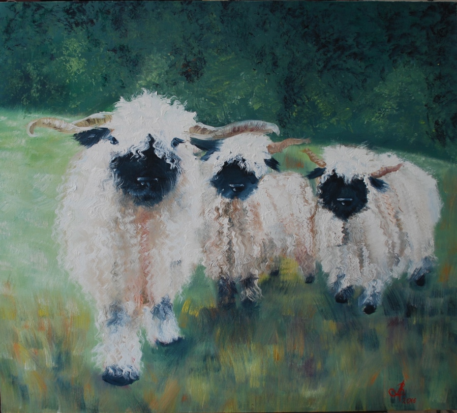 Black noses sheep, oil on canvas, 80*70cm