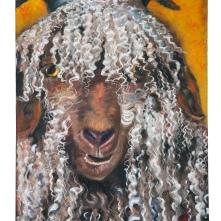 Angora goat, oil on canvas, 90*70cm